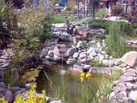fuentes y estanques  en León