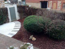 Acondicionamiento de Jardín