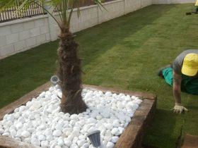 Jardineria_en_leon_jardines